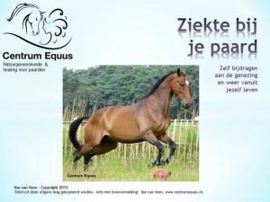 Ebook ziekte paard zelf genezing paarden fluisteraar Centrum Equus